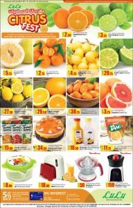 lulu-citrus-11-01