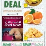 al-rawabi-we-17-01-1