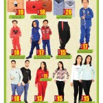 ansar-savings-30-01-15