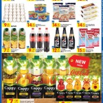 carrefour-13-03-3